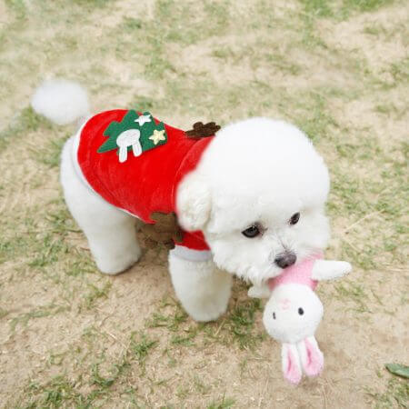 Christmas Cat Clothes Small Dogs Cats Santa Costume Kitten Puppy Outfit Hoodie Warm Pet Dog Clothes Clothing Accessories 2