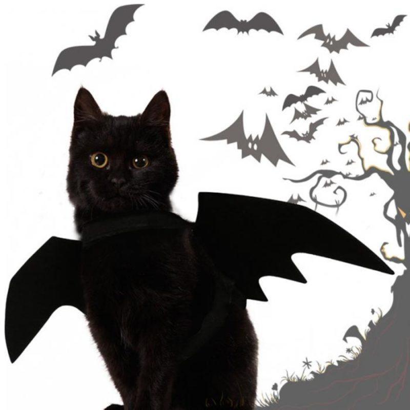 2019 New OLN Pet Dog Cat Bat Wing Cosplay Prop Halloween Bat Fancy Dress Costume Outfit Wings Cat Costumes Photo Props Headwear 5
