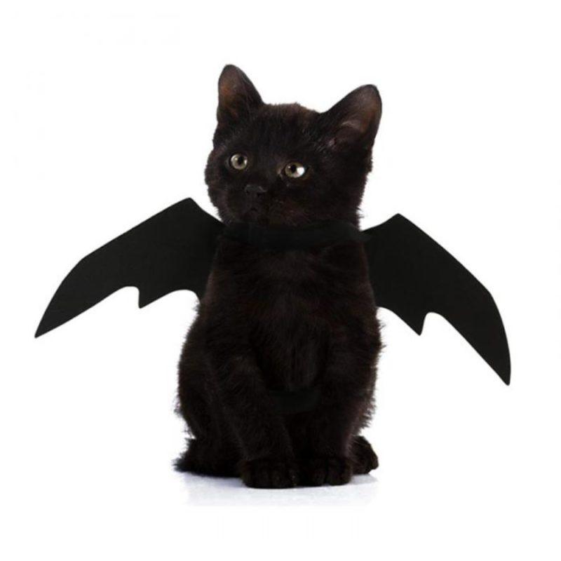 2019 New OLN Pet Dog Cat Bat Wing Cosplay Prop Halloween Bat Fancy Dress Costume Outfit Wings Cat Costumes Photo Props Headwear 1