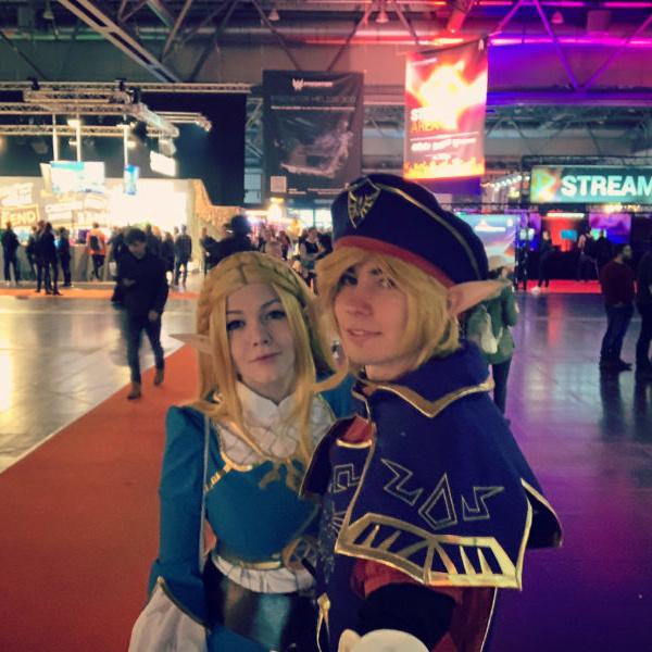 Royal Guard Link Cosplay